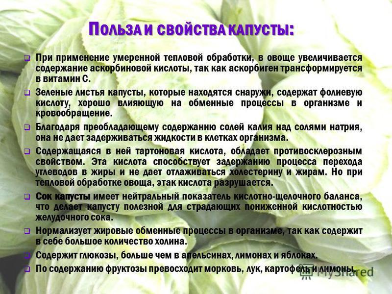 П ОЛЬЗА И СВОЙСТВА КАПУСТЫ : П ОЛЬЗА И СВОЙСТВА КАПУСТЫ : При применение умеренной тепловой обработки, в овоще увеличивается содержание аскорбиновой кислоты, так как аскорбиген трансформируется в витамин C. Зеленые листья капусты, которые находятся с
