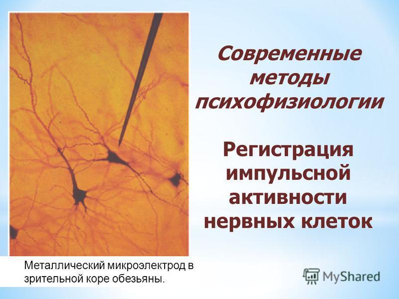 Металлический микроэлектрод в зрительной коре обезьяны. Современные методы психофизиологии Регистрация импульсной активности нервных клеток