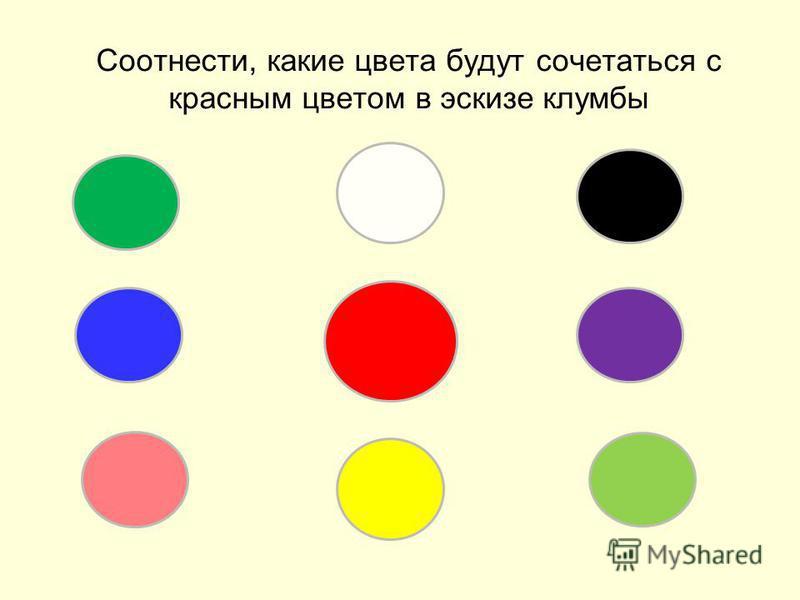 Соотнести, какие цвета будут сочетаться с красным цветом в эскизе клумбы