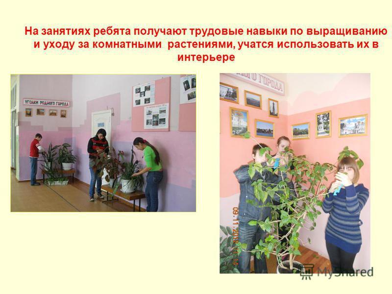 На занятиях ребята получают трудовые навыки по выращиванию и уходу за комнатными растениями, учатся использовать их в интерьере
