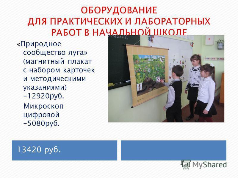 13420 руб. «Природное сообщество луга» (магнитный плакат с набором карточек и методическими указаниями) -12920 руб. Микроскоп цифровой -5080 руб.