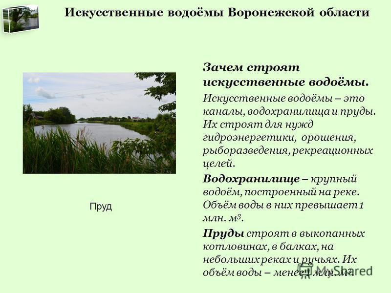 Искусственные водоёмы Воронежской области Зачем строят искусственные водоёмы. Искусственные водоёмы – это каналы, водохранилища и пруды. Их строят для нужд гидроэнергетики, орошения, рыборазведения, рекреационных целей. Водохранилище – крупный водоём