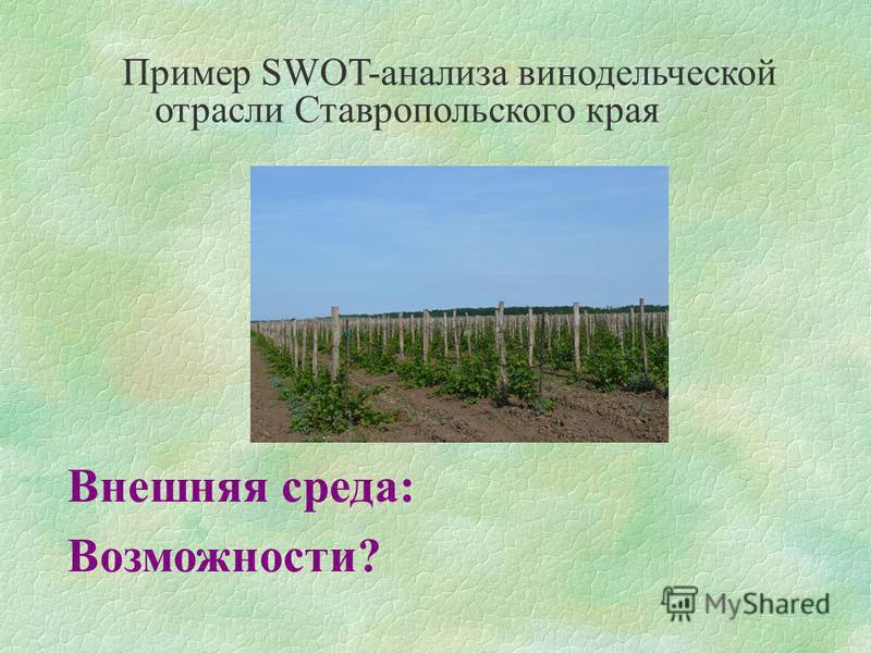 Пример SWOT-анализа винодельческой отрасли Ставропольского края Внешняя среда: Возможности?