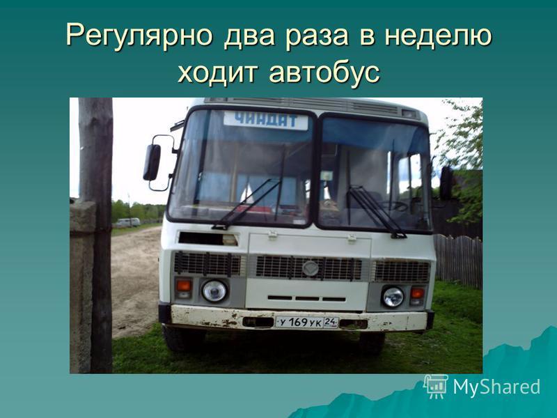 Регулярно два раза в неделю ходит автобус