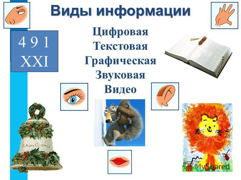 4 9 1 ХХI Цифровая Текстовая Графическая Звуковая Видео Виды информации