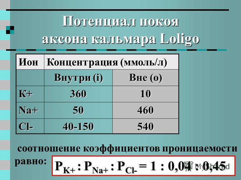 Потенциал покоя аксона кальмара Loligo соотношение коэффициентов проницаемости равно: Ион Концентрация (ммоль/л) Внутри (i) Вне (о) К+ 36036036036010 Na+ 50460 Сl-Сl-Сl-Сl-40-150540 P K+ : P Na+ : P Cl- = 1 : 0,04 : 0,45