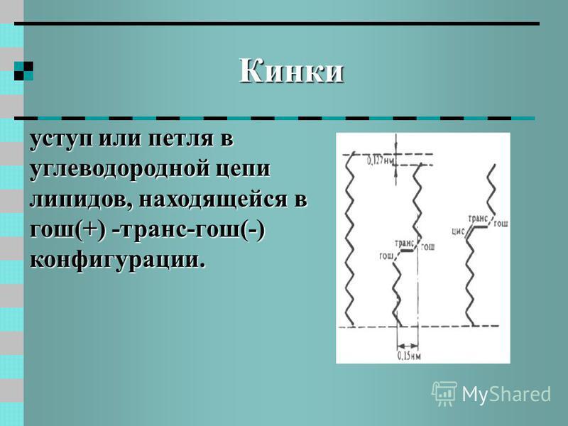 Кинки уступ или петля в углеводородной цепи липидов, находящейся в гош(+) -транс-гош(-) конфигурации.