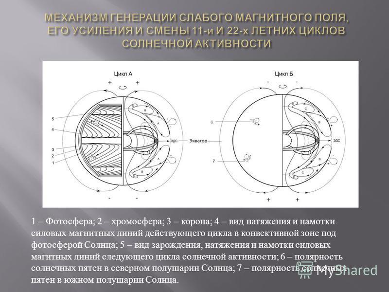 1 – Фотосфера ; 2 – хромосфера ; 3 – корона ; 4 – вид натяжения и намотки силовых магнитных линий действующего цикла в конвективной зоне под фотосферой Солнца ; 5 – вид зарождения, натяжения и намотки силовых магнитных линий следующего цикла солнечно
