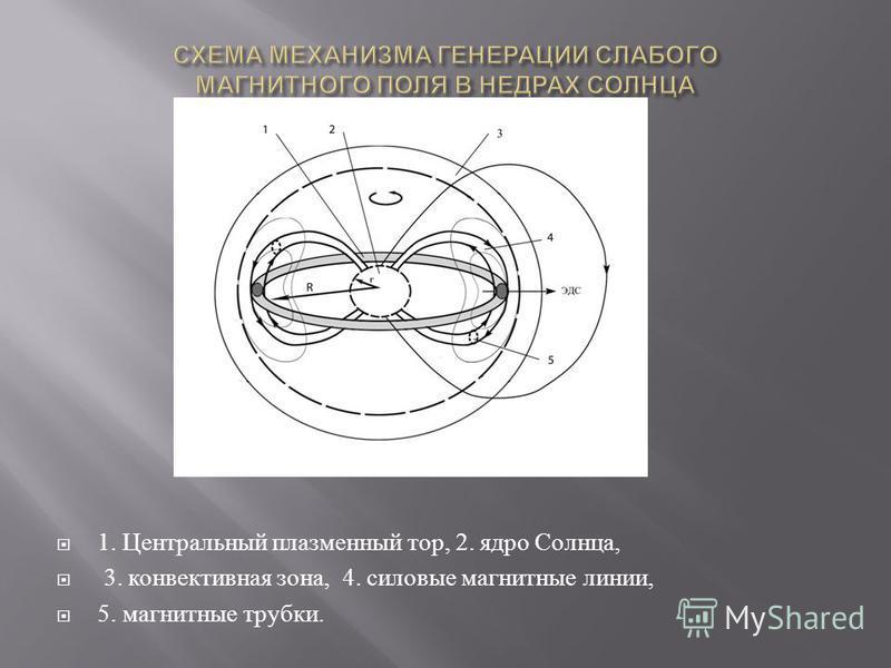 1. Центральный плазменный тор, 2. ядро Солнца, 3. конвективная зона, 4. силовые магнитные линии, 5. магнитные трубки.
