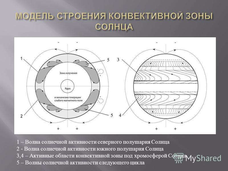 1 – Волна солнечной активности северного полушария Солнца 2 - Волна солнечной активности южного полушария Солнца 3,4 – Активные области конвективной зоны под хромосферой Солнца 5 – Волны солнечной активности следующего цикла