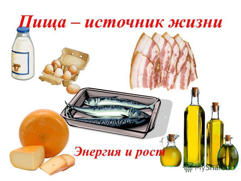 Правильное питание - это сытное питание разнообразное питание обильное питание полезное питание