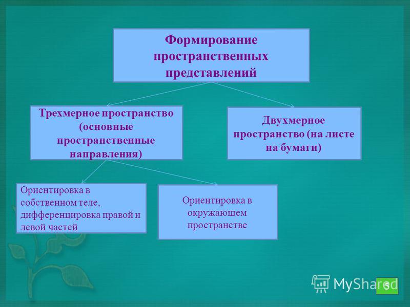 Формирование пространственных представлений Трехмерное пространство (основные пространственные направления) Двухмерное пространство (на листе на бумаги) Ориентировка в собственном теле, дифференцировка правой и левой частей Ориентировка в окружающем