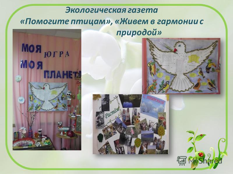 Экологическая газета «Помогите птицам», «Живем в гармонии с природой»