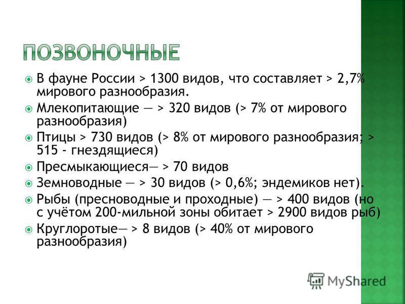 В фауне России > 1300 видов, что составляет > 2,7% мирового разнообразия. Млекопитающие > 320 видов (> 7% от мирового разнообразия) Птицы > 730 видов (> 8% от мирового разнообразия; > 515 - гнездящиеся) Пресмыкающиеся > 70 видов Земноводные > 30 видо