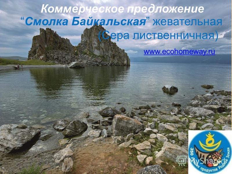 Смолка Байкальская жевательная (Сера лиственничная) www.ecohomeway.ru Коммерческое предложение