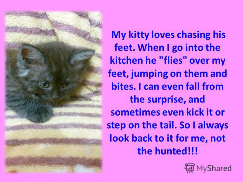 My kitty loves chasing his feet. When I go into the kitchen he flies over my feet, jumping on them and bites. I can even fall from the surprise, and sometimes even kick it or step on the tail. So I always look back to it for me, not the hunted!!!