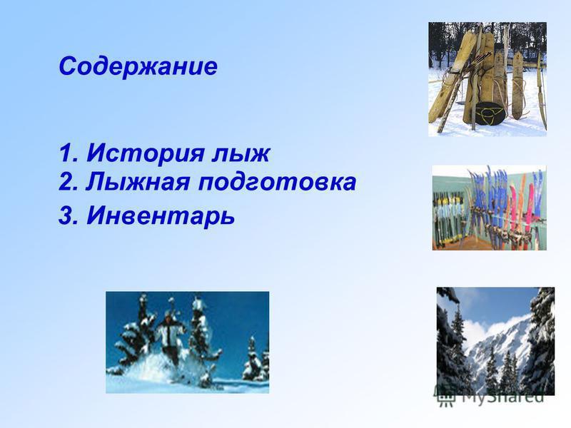 Лыжный спорт Презентацию выполнил ученик 2 в класса школы 37Илья Миляшов