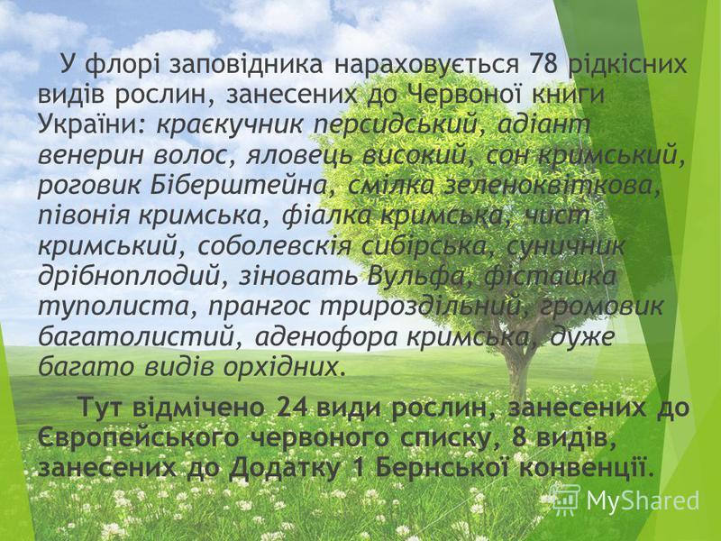 У флорі заповідника нараховується 78 рідкісних видів рослин, занесених до Червоної книги України: краєкучник персидський, адіант венерин волос, яловець високий, сон кримський, роговик Біберштейна, смілка зеленоквіткова, півонія кримська, фіалка кримс