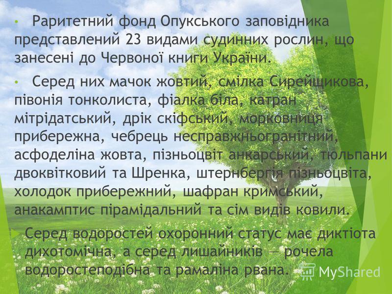 Раритетний фонд Опукського заповідника представлений 23 видами судинних рослин, що занесені до Червоної книги України. Серед них мачок жовтий, смілка Сирейщикова, півонія тонколиста, фіалка біла, катран мітрідатський, дрік скіфський, морковниця прибе