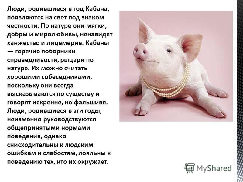 люди под знаком крысы