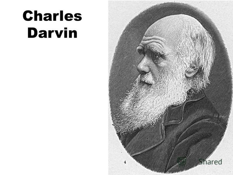 Charles Darvin