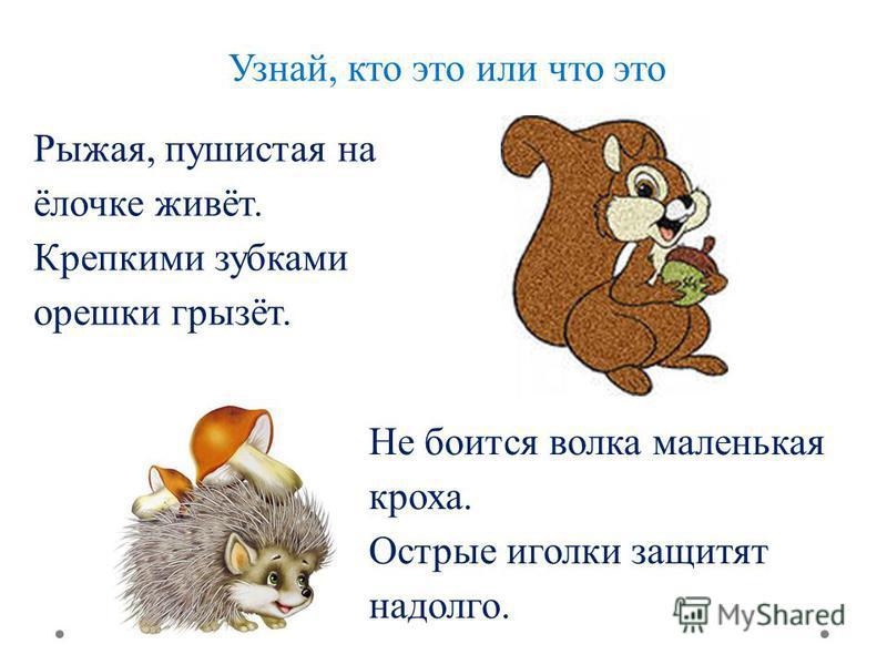 Узнай, кто это или что это Рыжая, пушистая на ёлочке живёт. Крепкими зубками орешки грызёт. Не боится волка маленькая кроха. Острые иголки защитят надолго.