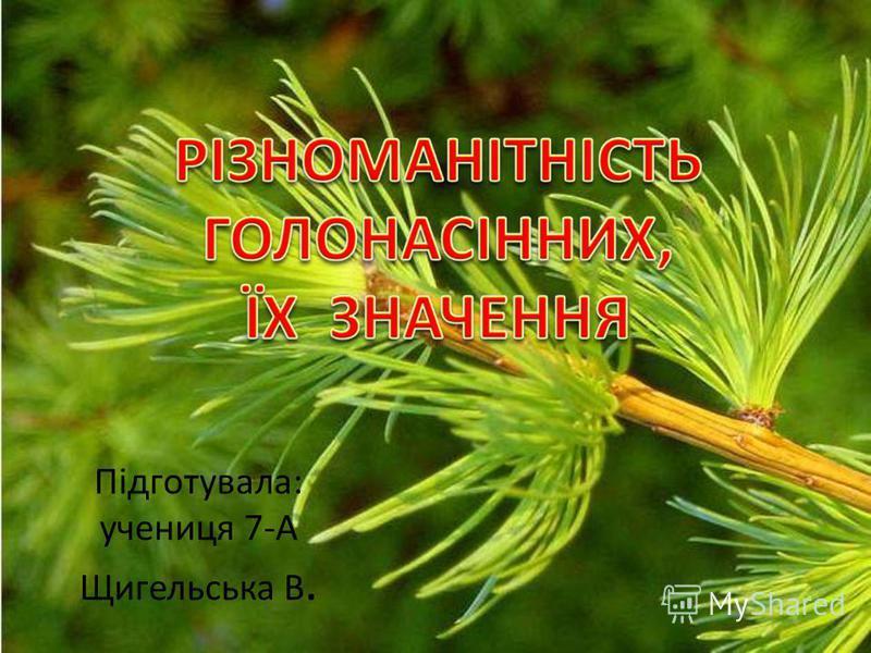 Підготувала: учениця 7-А Щигельська В.