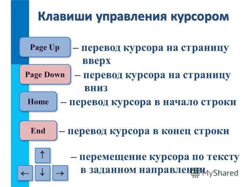 Клавиши управления курсором – перевод курсора на страницу вверх – перевод курсора на страницу вниз – перевод курсора в начало строки – перевод курсора в конец строки – перемещение курсора по тексту в заданном направлении