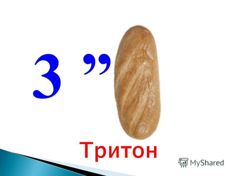 3 Тритон