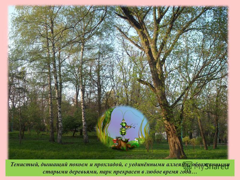 Тенистый, дышащий покоем и прохладой, с уединёнными аллеями, обсаженными старыми деревьями, парк прекрасен в любое время года …