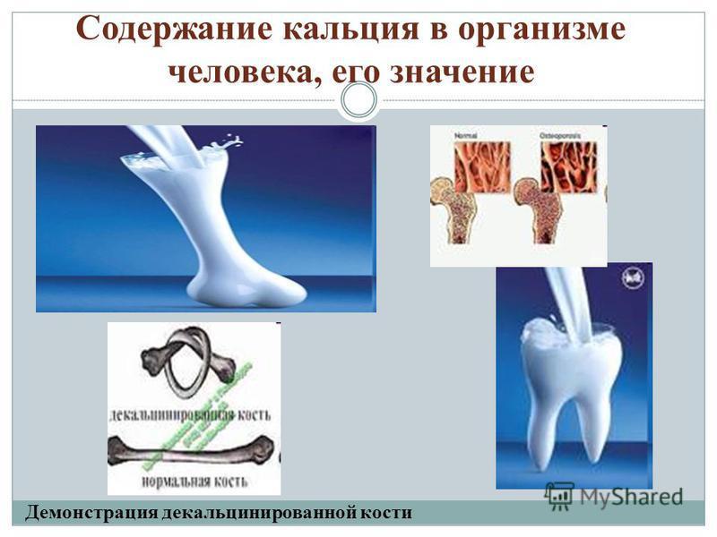 Содержание кальция в организме человека, его значение Демонстрация декальцинированной кости