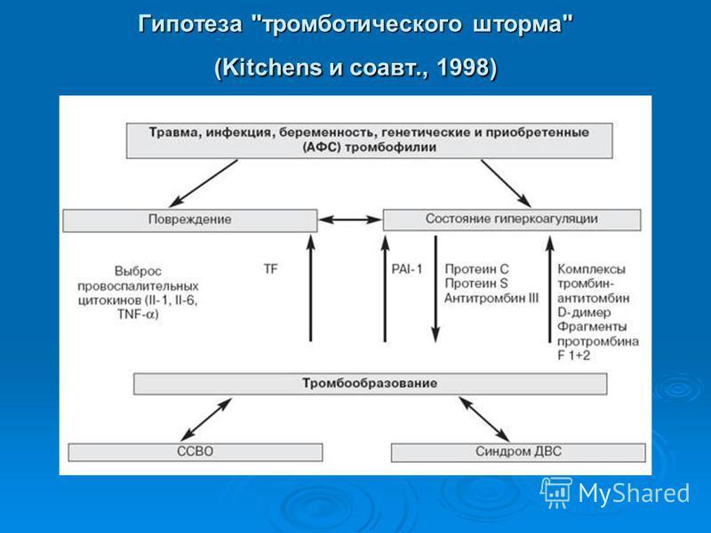 Гипотеза тромботического шторма (Kitchens и соавт., 1998)