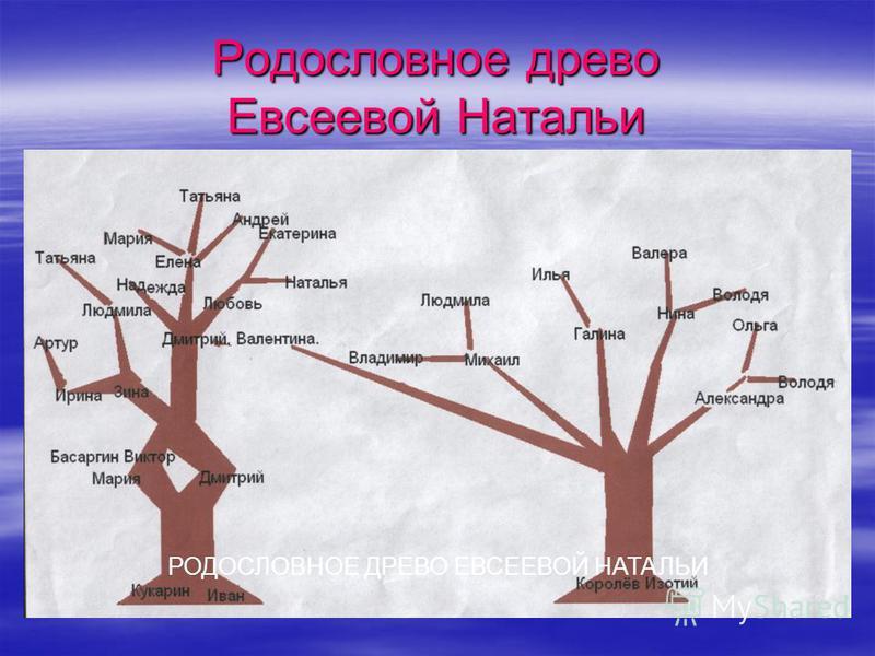 Родословное древо Евсеевой Натальи РОДОСЛОВНОЕ ДРЕВО ЕВСЕЕВОЙ НАТАЛЬИ