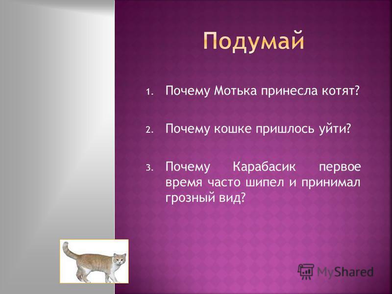 1. Почему Мотька принесла котят? 2. Почему кошке пришлось уйти? 3. Почему Карабасик первое время часто шипел и принимал грозный вид?