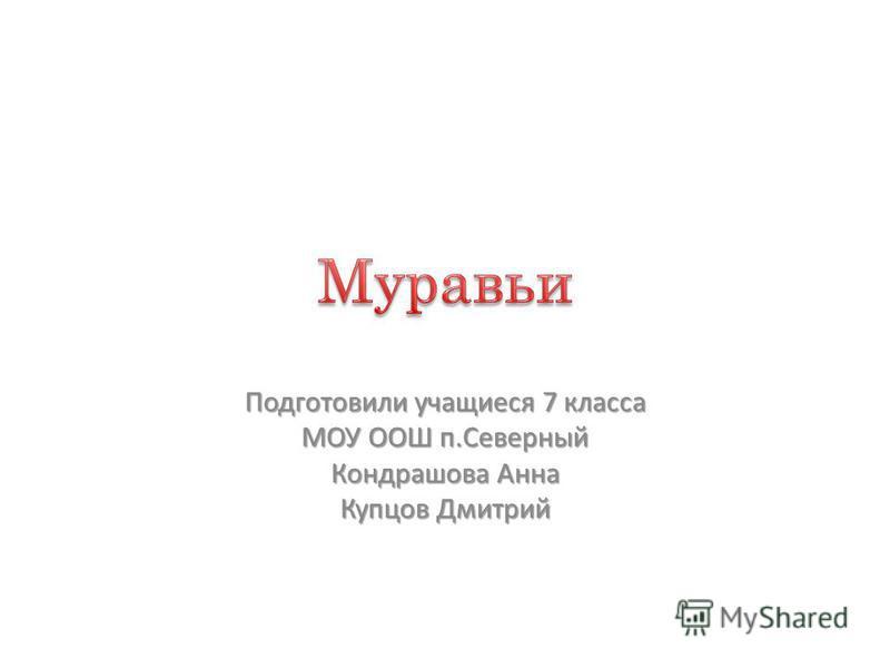 Подготовили учащиеся 7 класса МОУ ООШ п.Северный Кондрашова Анна Купцов Дмитрий