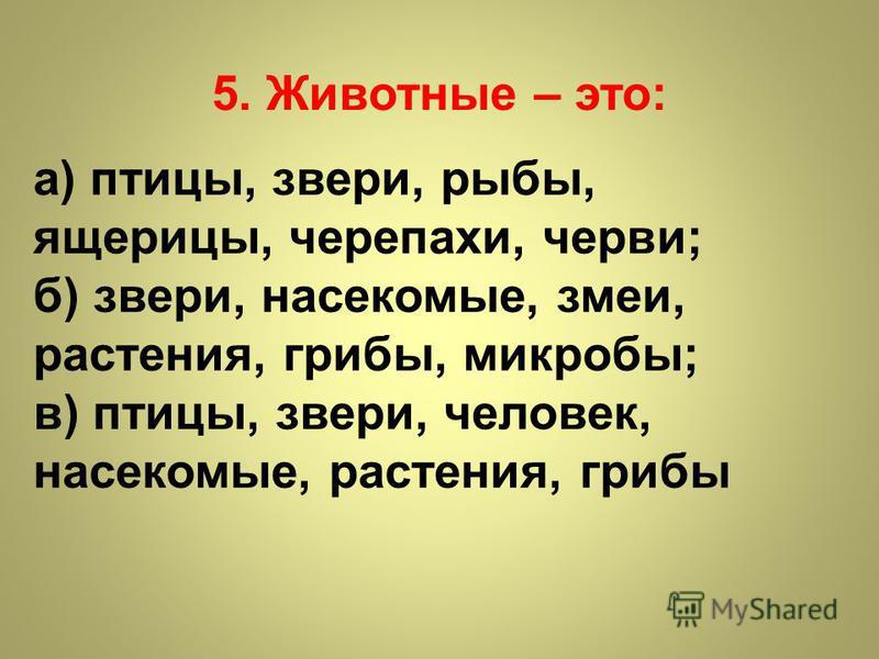 5. Животные – это: а) птицы, звери, рыбы, ящерицы, черепахи, черви; б) звери, насекомые, змеи, растения, грибы, микробы; в) птицы, звери, человек, насекомые, растения, грибы