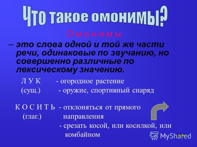 П Л А Н Р А Б О Т Ы: ТЕОРИЯ: - что такое омонимы - как различать омонимы и многозначные слова - работа со словарем ПРАКТИКА: - задания и упражнения