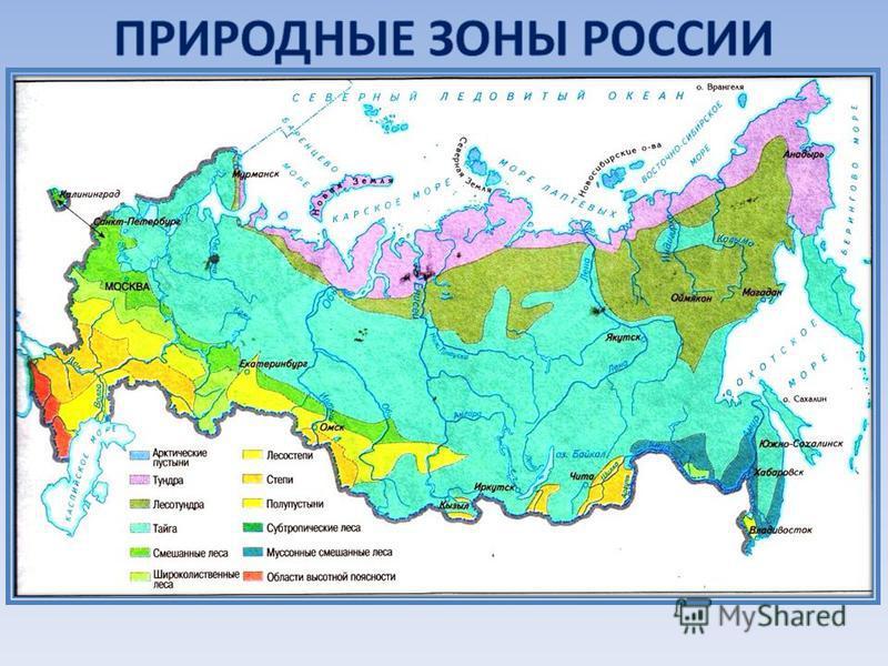 Презентация на тему природные зоны россии 8 класс