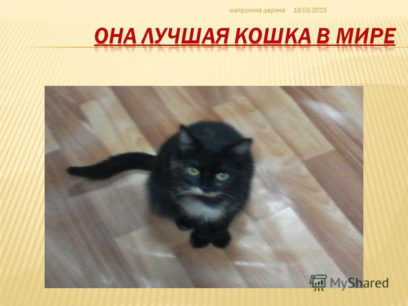 ЛЮБИМАЯЯЯ 18.03.2015 матрехина дарина