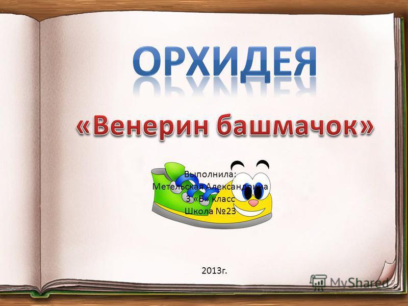 2013 г. Выполнила: Метельская Александрина 3 «Б» класс Школа 23