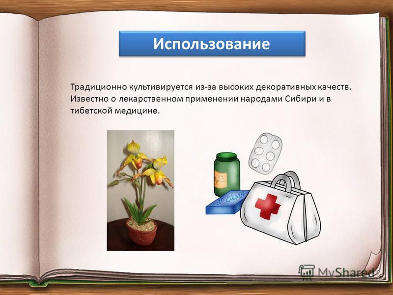 Традиционно культивируется из-за высоких декоративных качеств. Известно о лекарственном применении народами Сибири и в тибетской медицине. Использование