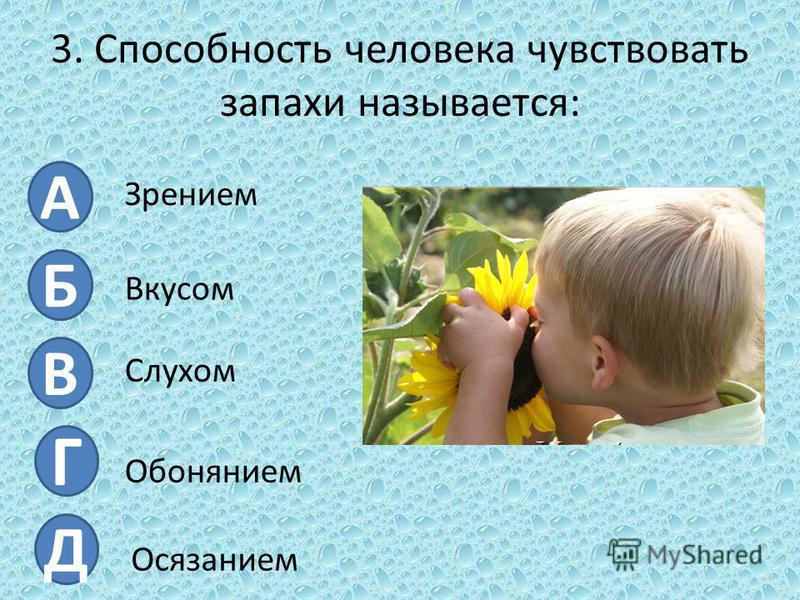 3. Способность человека чувствовать запахи называется: А Б В Г Д Зрением Вкусом Слухом Обонянием Осязанием