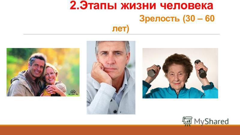 2. Этапы жизни человека Зрелость (30 – 60 лет)