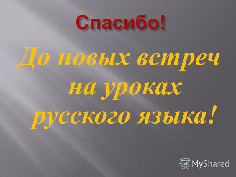 До новых встреч на уроках русского языка !