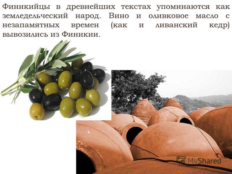 Финикийцы в древнейших текстах упоминаются как земледельческий народ. Вино и оливковое масло с незапамятных времен (как и ливанский кедр) вывозились из Финикии.