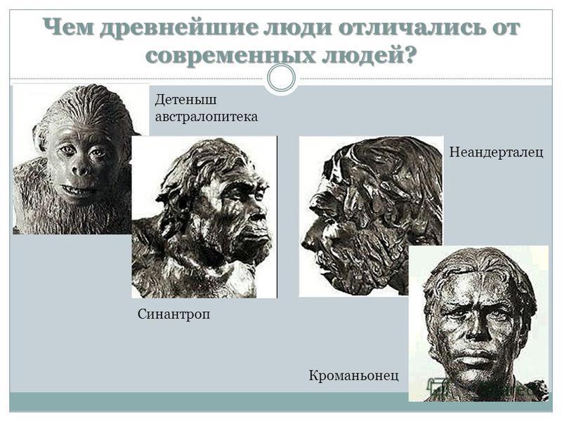 Чем древнейшие люди отличались от современных людей? Детеныш австралопитека Синантроп Неандерталец Кроманьонец
