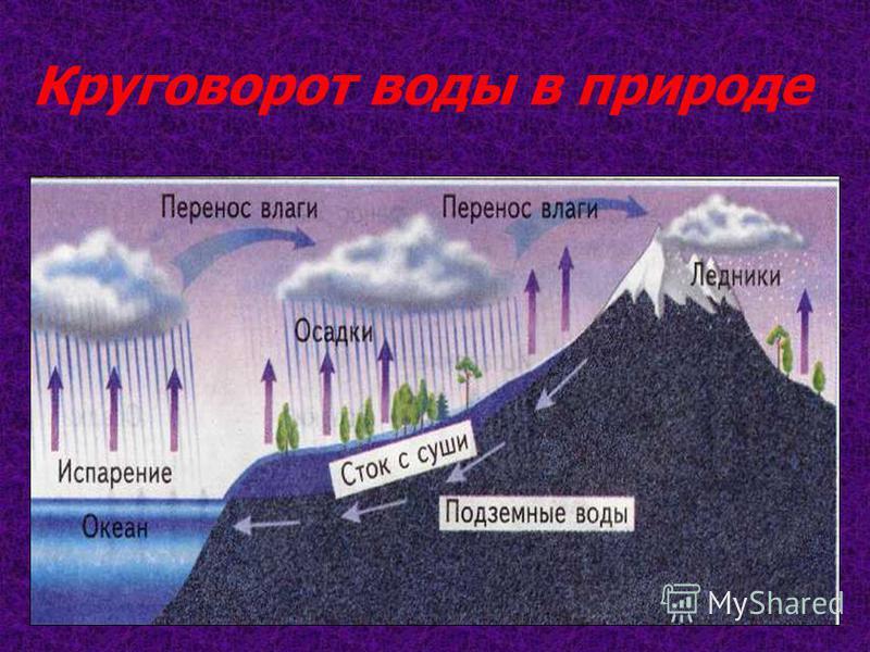 С поверхности водоёмов и почвы вода испаряется и в виде пара поднимается высоко вверх. Воздух высоко над землей всегда холодный. Пар охлаждается там и образует множество водяных капелек. Из этих капелек и льдинок образуются облака. Из облака вода воз