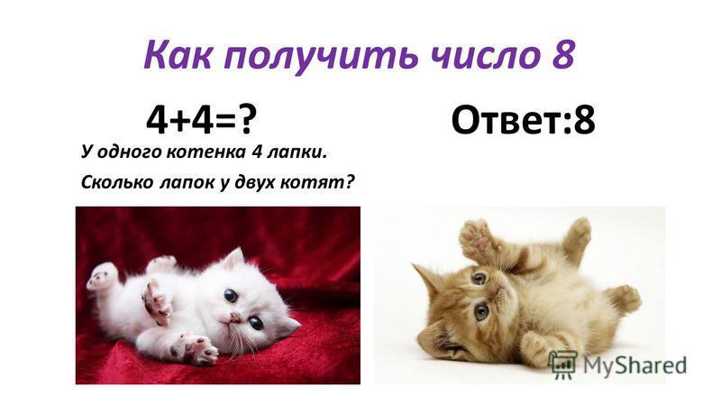 Как получить число 8 4+4=? Ответ:8 У одного котенка 4 лапки. Сколько лапок у двух котят?
