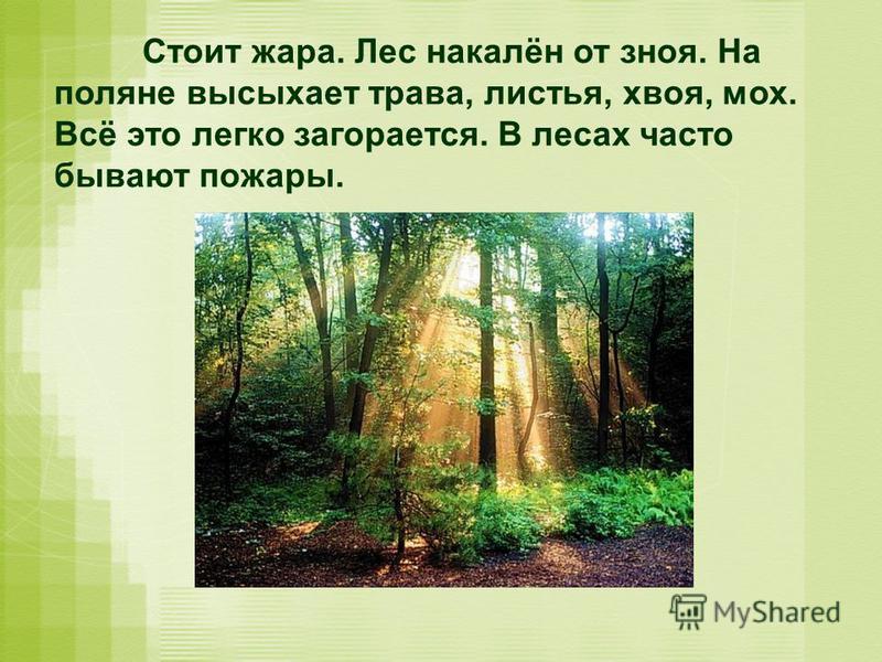 Стоит жара. Лес накалён от зноя. На поляне высыхает трава, листья, хвоя, мох. Всё это легко загорается. В лесах часто бывают пожары.