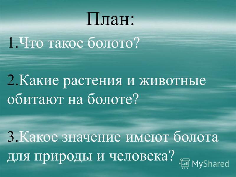 План: 1. Что такое болото? 2. Какие растения и животные обитают на болоте? 3. Какое значение имеют болота для природы и человека?